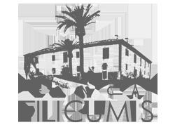 Filicumis